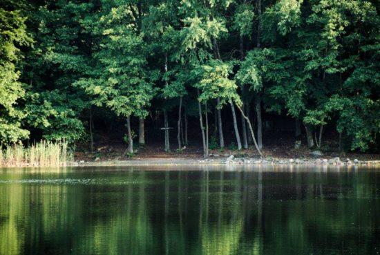 Łowisko Kamienna