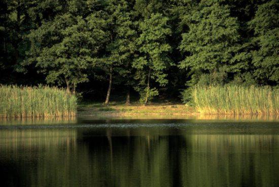 Łowisko Zielonka